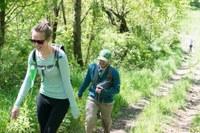 Training Hikes