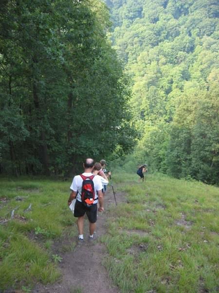 Descending the steep hill near Sheetz