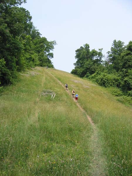 Up Log Cabin hill