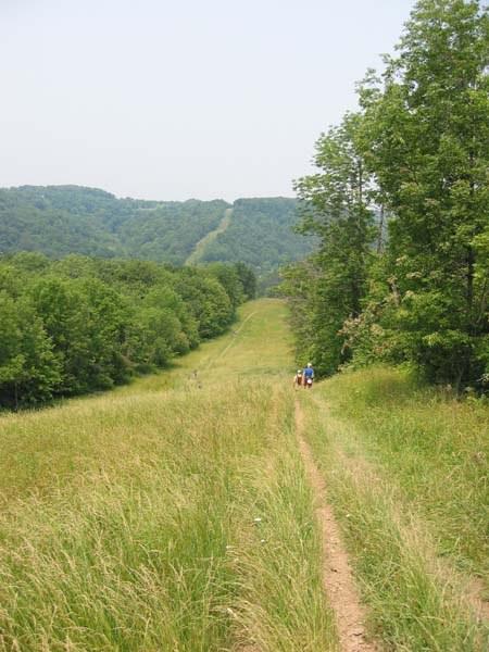 Along Log Cabin hill