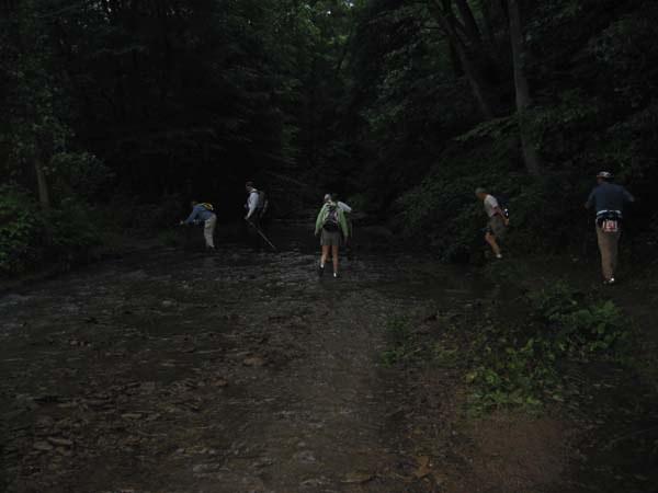 First Crouse Run stream crossing