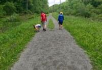 The Harmony Trail