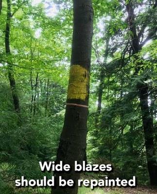 blaze-wide.jpg